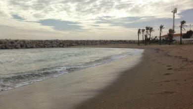Foto de Entrenamiento semana 17 al 23 de noviembre