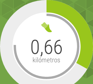 Moto Body, day steps, distance