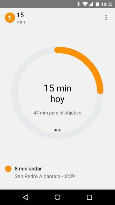 Captura Google Fit