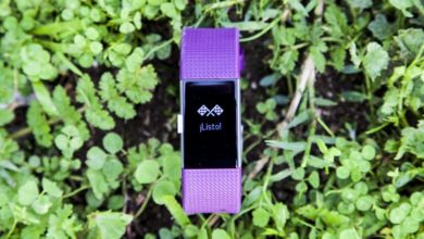 Fitbit Charge 2, activity wristband with optical pulse sensor | Full analysis 16