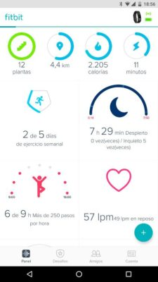 Fitbit Charge 2 - Activity