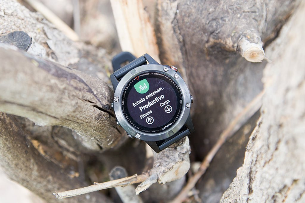 Garmin Fenix 5 - Training Status