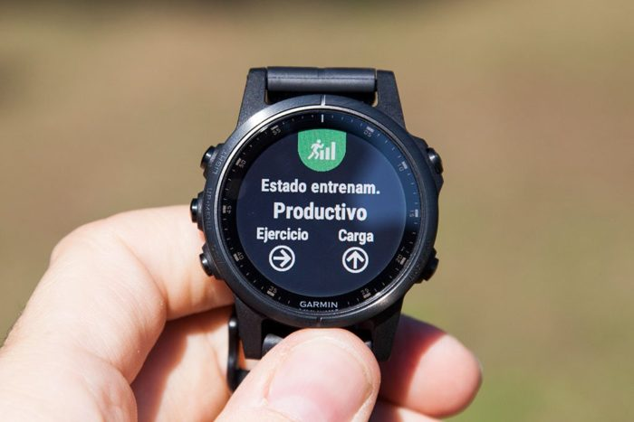 Garmin Fenix 5 Plus - Training Status
