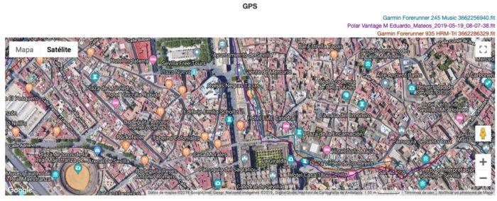Garmin Forerunner 245 Music - GPS