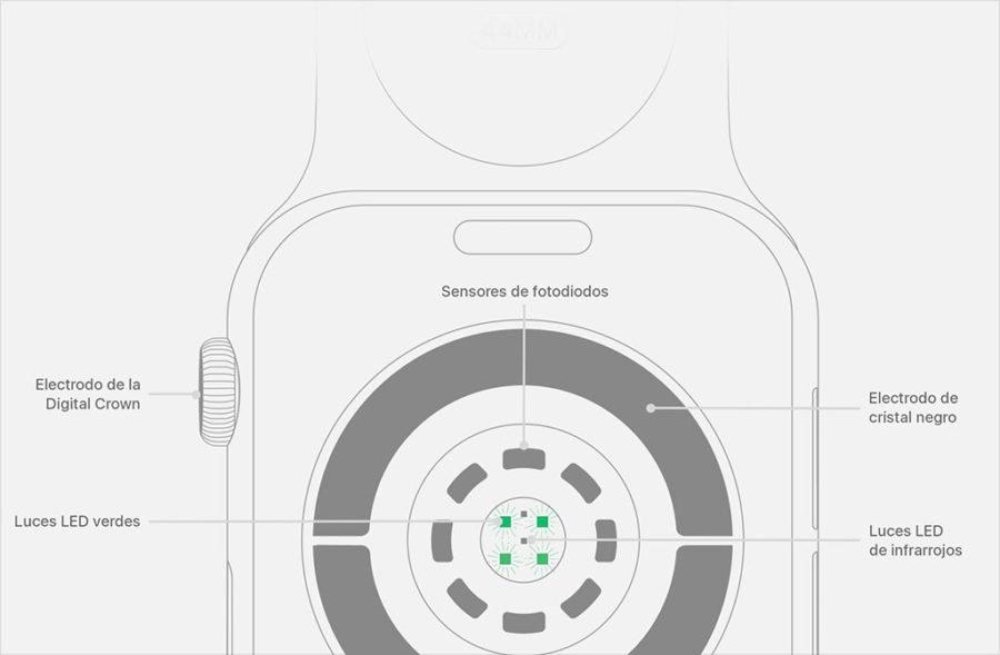 Apple Watch - Sensor de pulso óptico