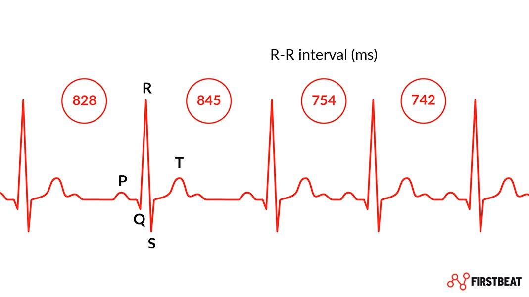 HRV Variabilidad de pulso