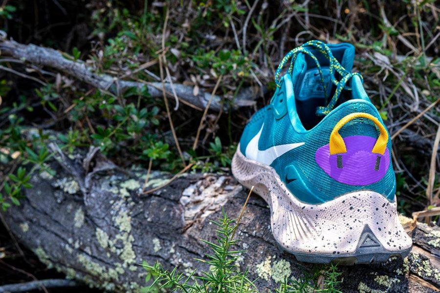 Nike Pegasus Trail 3 - Flare